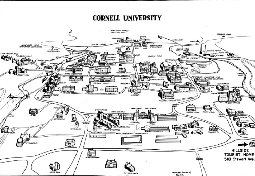 How to get into Cornell